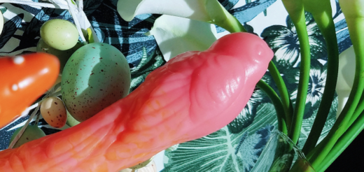 Silc Arts Sparrow Large bird-shaped artisan dildo review 7